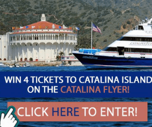 Catalina flyer giveaway – 300×250