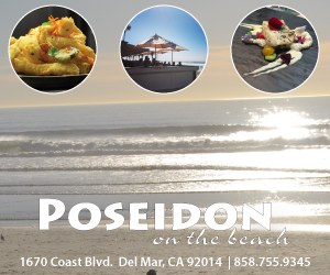 Poseidon 300 x 250