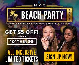 Vavi 2018 NYE Beach Party 300 x 250