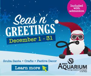 Birch Aquarium 2019 Seas N Greetings 300 x 250
