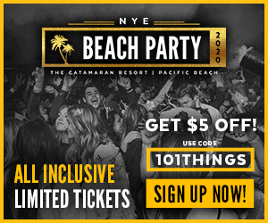 Vavi 2019 New Years Beach Party 300 x 250