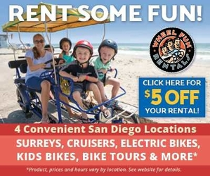Wheel Fun Rentals 2019 – 300 x 250